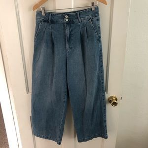 Madewell Wide Leg Pleated Jeans